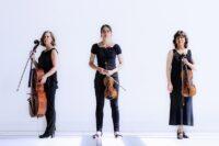 The Hague String Trio - Weense klanken