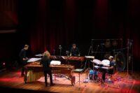 Havelok Percussion - 'Glass on Wood'