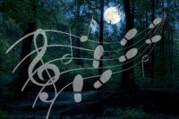 Muziekwandeling Nacht van de Nacht